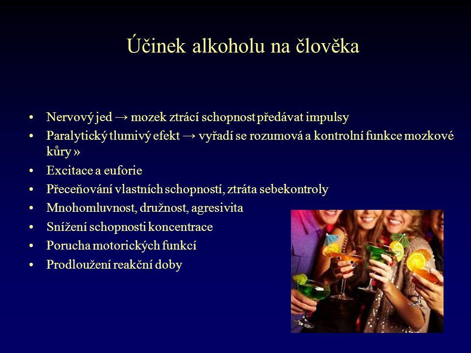 Účinek alkoholu na člověka