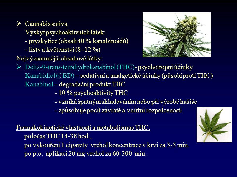 Cannabis sativa Výskyt psychoaktivních látek: - pryskyřice (obsah 40 % kanabinoidů) - listy a květenství (8 -12 %)
