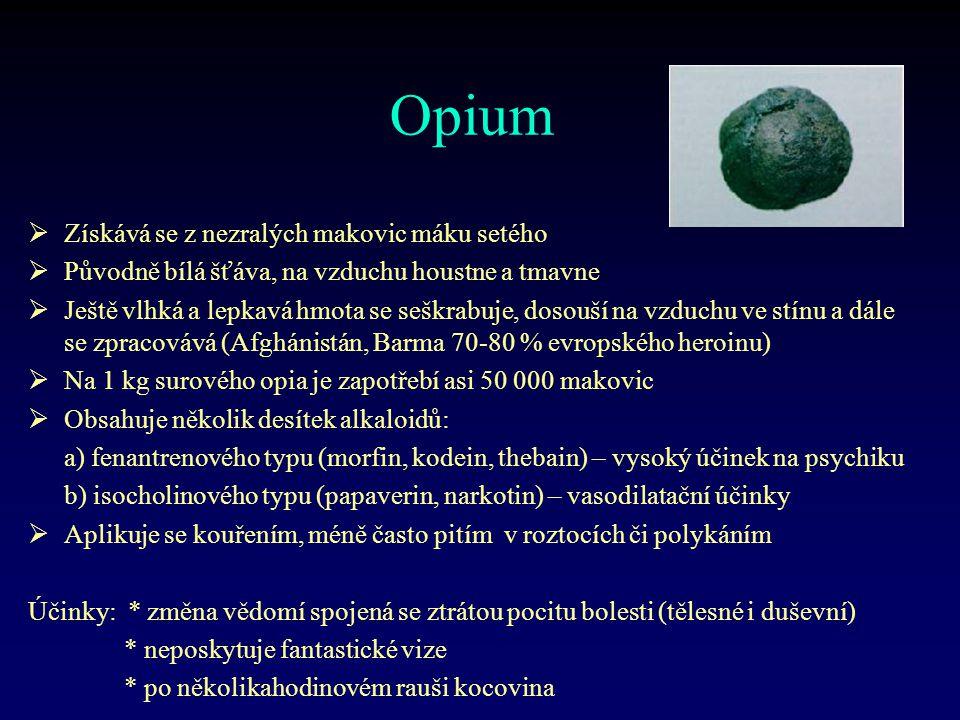 Opium Získává se z nezralých makovic máku setého