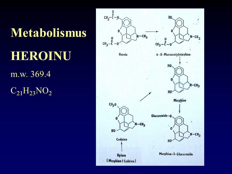 Metabolismus HEROINU m.w. 369.4 C21H23NO2