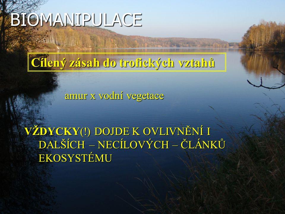 BIOMANIPULACE Cílený zásah do trofických vztahů amur x vodní vegetace