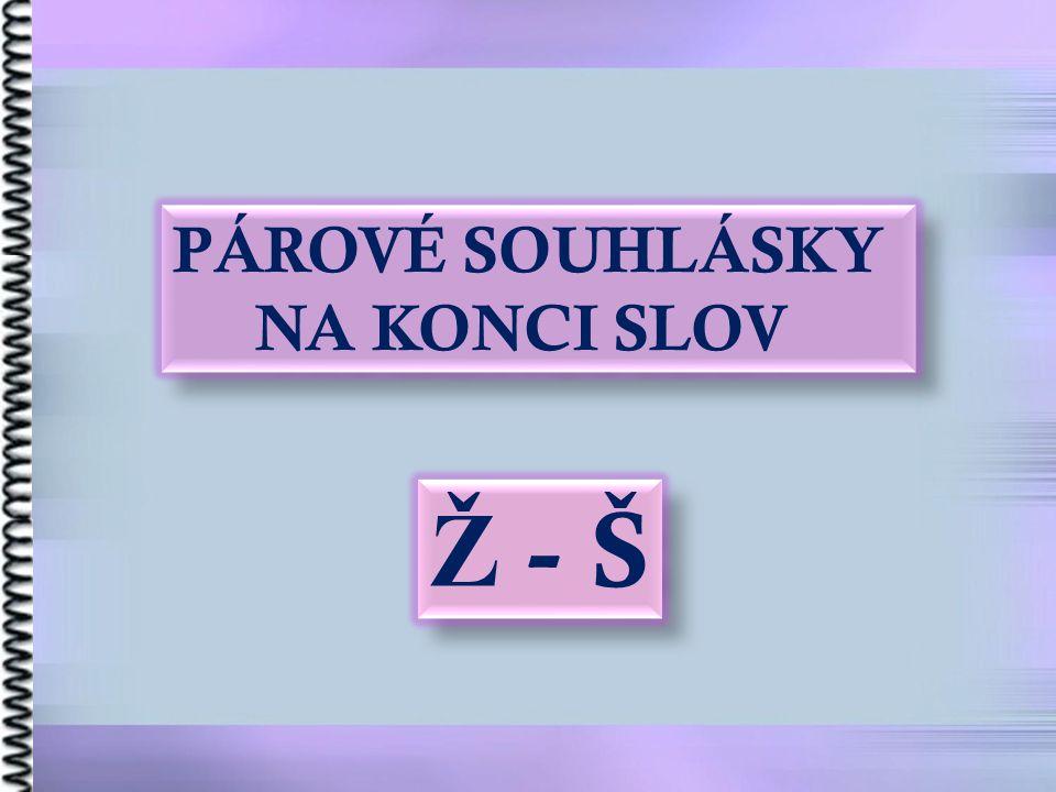 PÁROVÉ SOUHLÁSKY NA KONCI SLOV Ž - Š