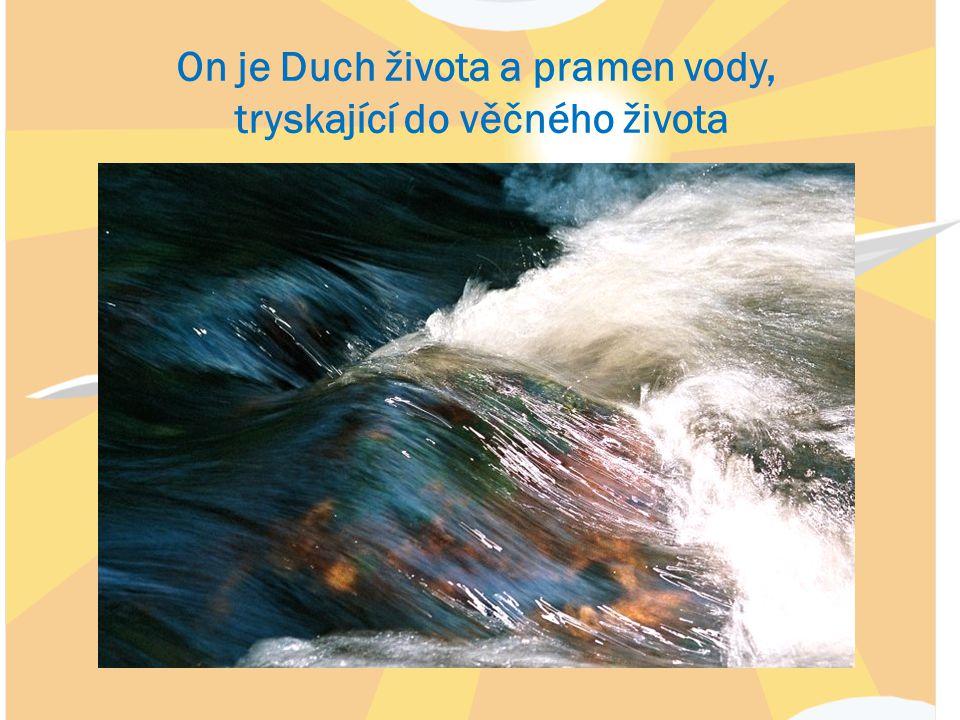 On je Duch života a pramen vody, tryskající do věčného života