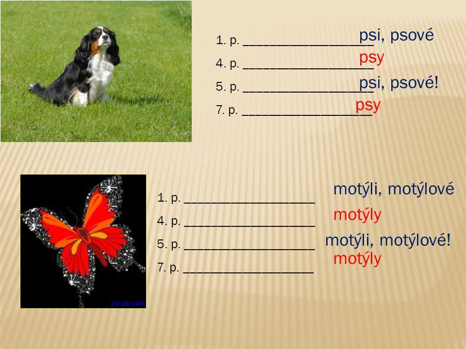psi, psové psy psi, psové! psy motýli, motýlové motýly