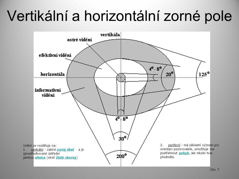 Vertikální a horizontální zorné pole