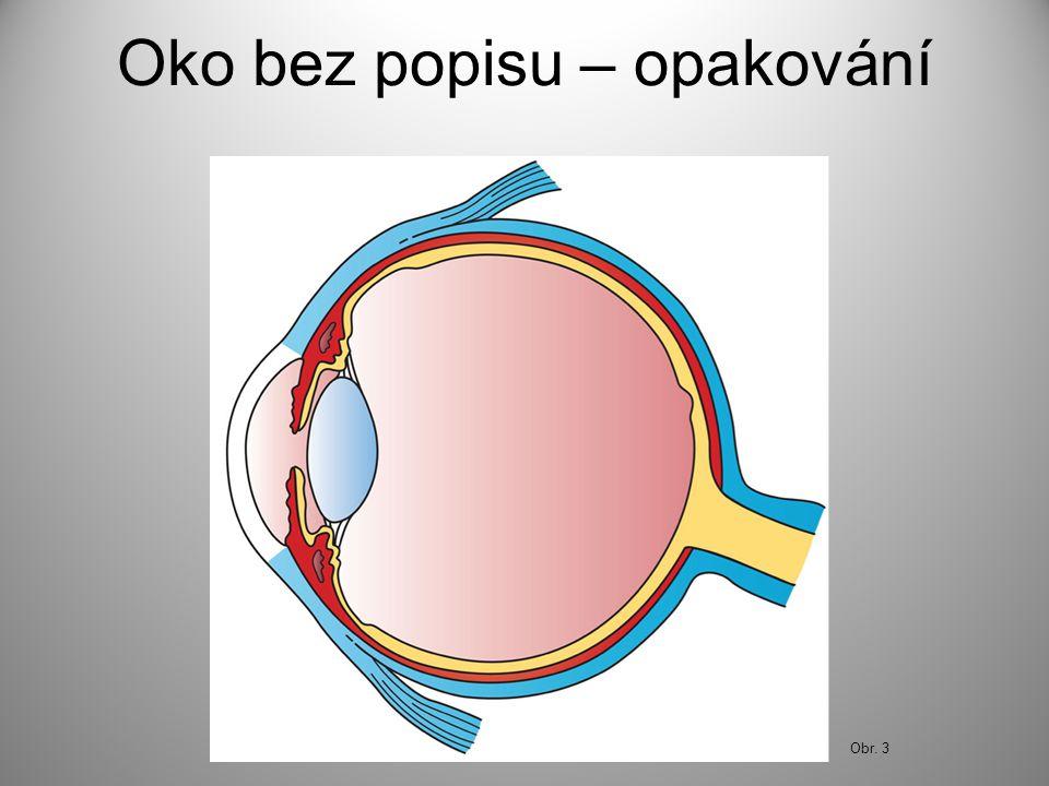 Oko bez popisu – opakování