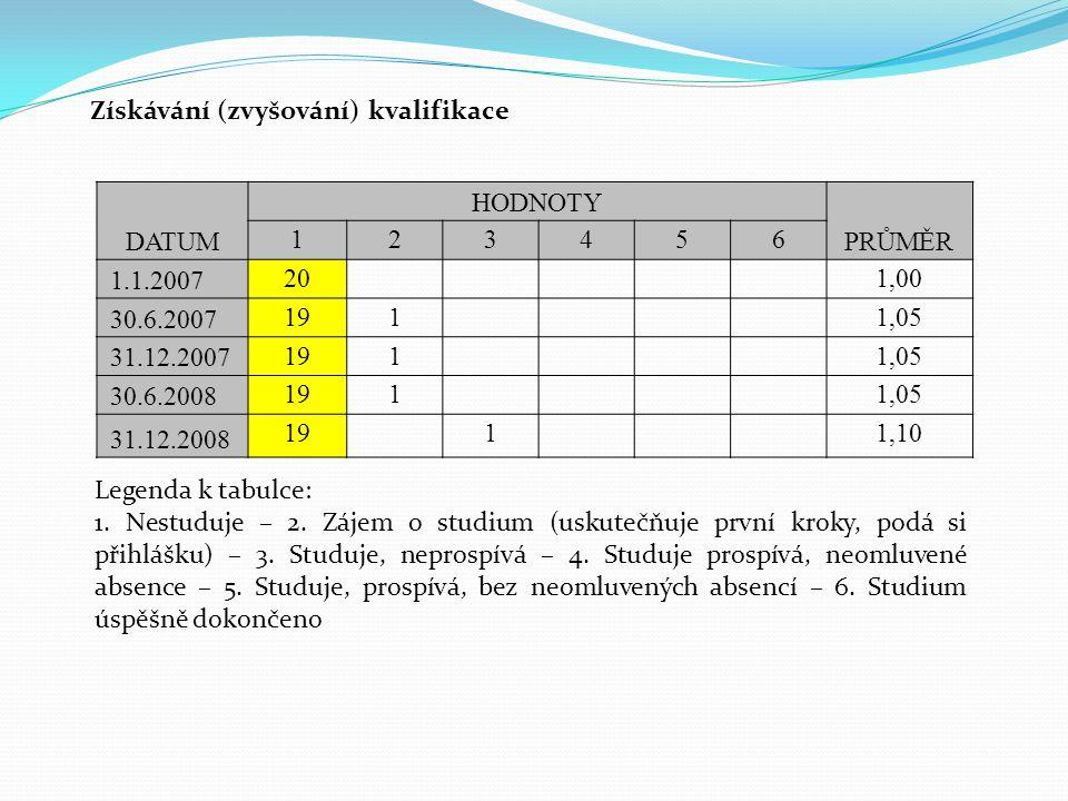 Získávání (zvyšování) kvalifikace