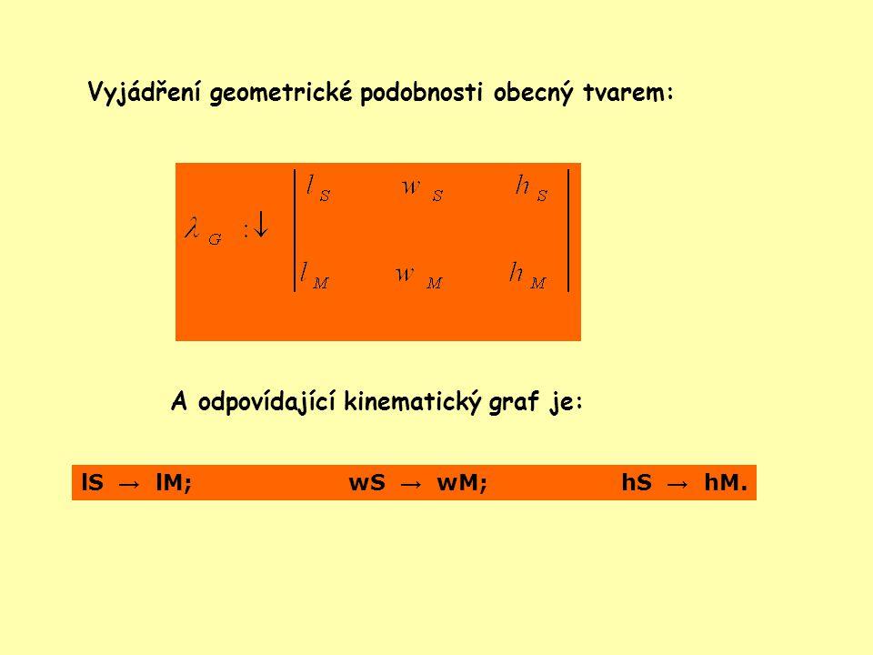 Vyjádření geometrické podobnosti obecný tvarem:
