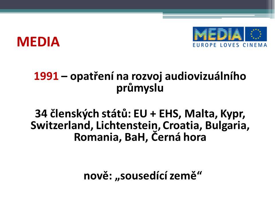MEDIA 1991 – opatření na rozvoj audiovizuálního průmyslu