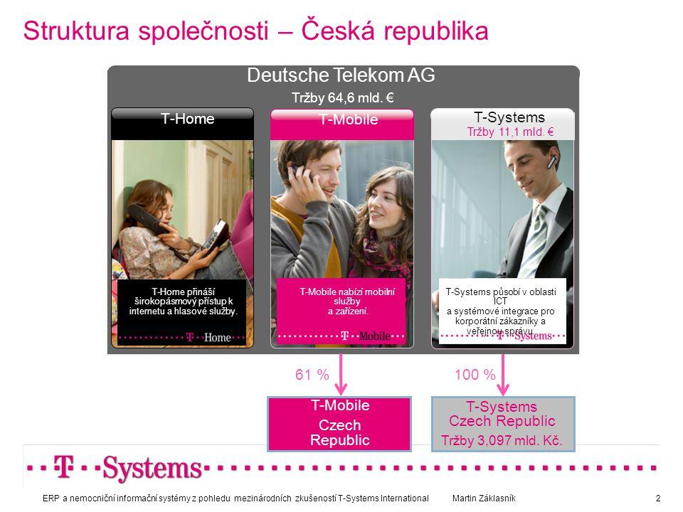 Struktura společnosti – Česká republika