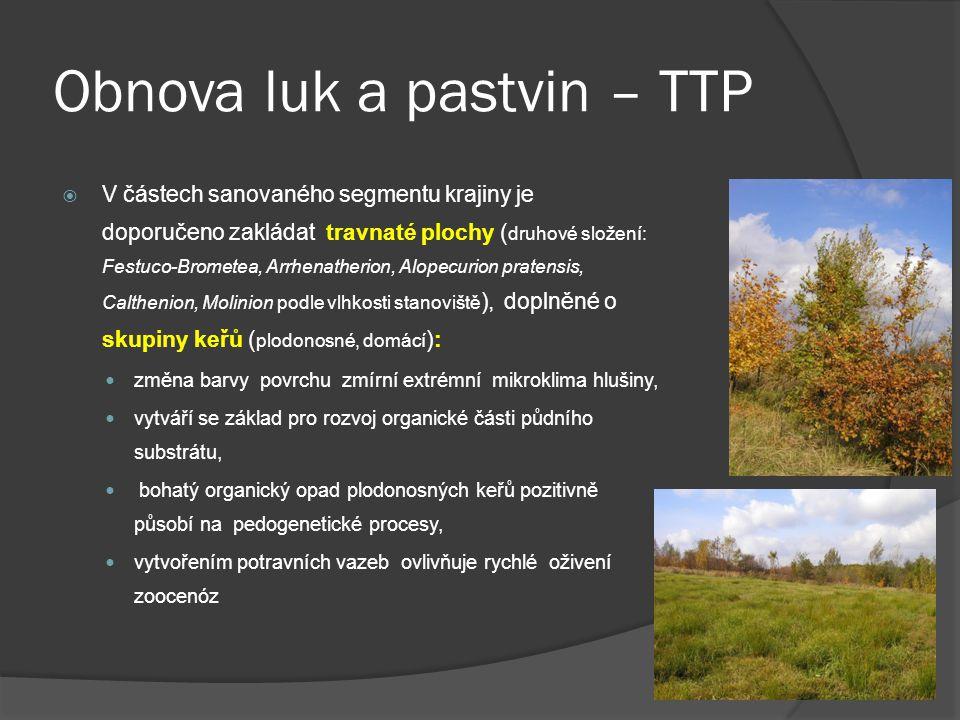 Obnova luk a pastvin – TTP