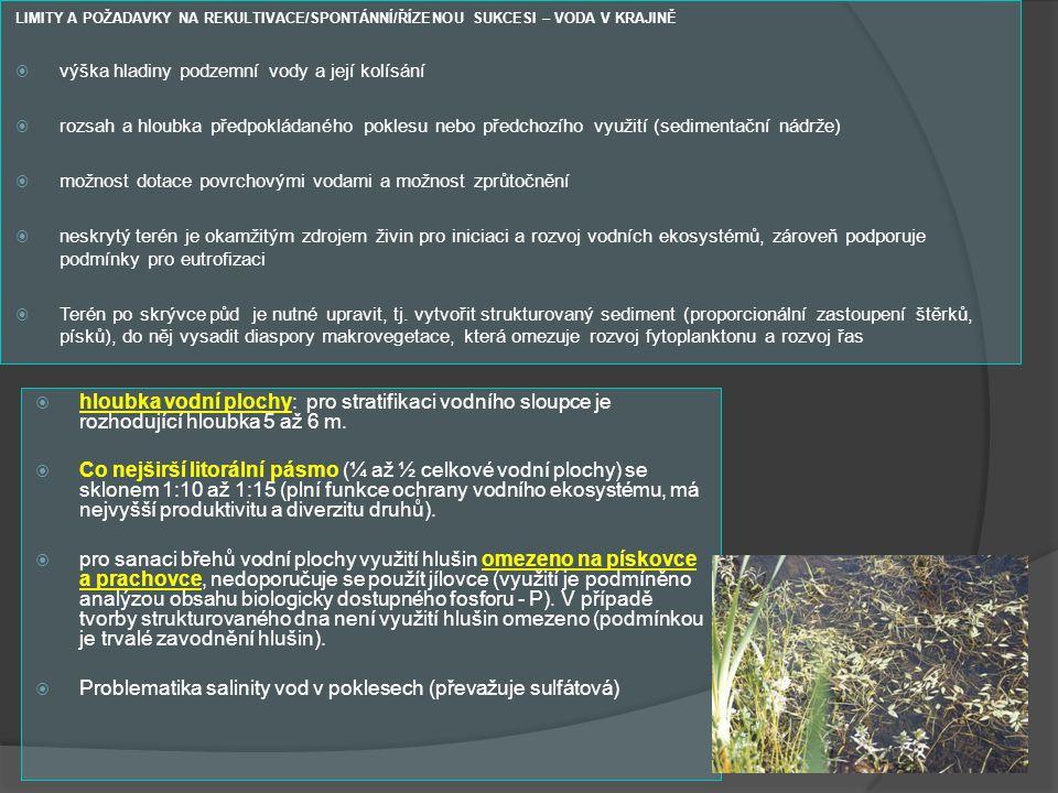 Problematika salinity vod v poklesech (převažuje sulfátová)