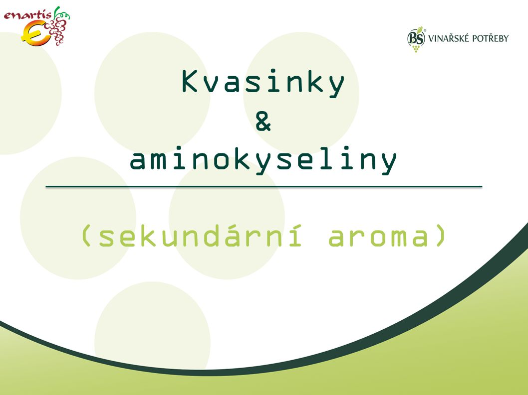 Kvasinky & aminokyseliny (sekundární aroma)