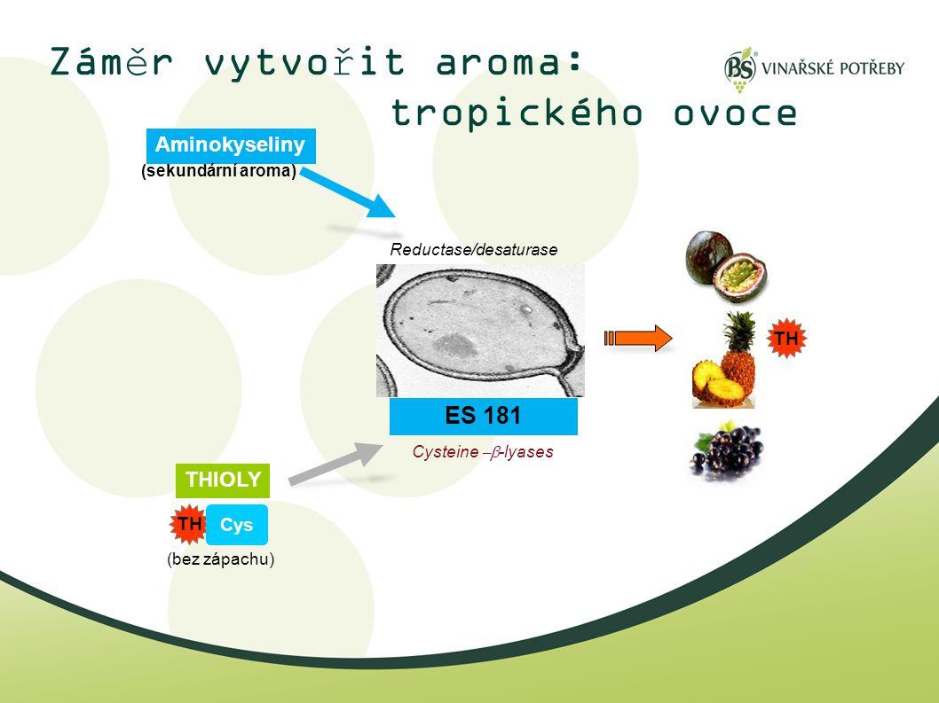 Záměr vytvořit aroma: tropického ovoce