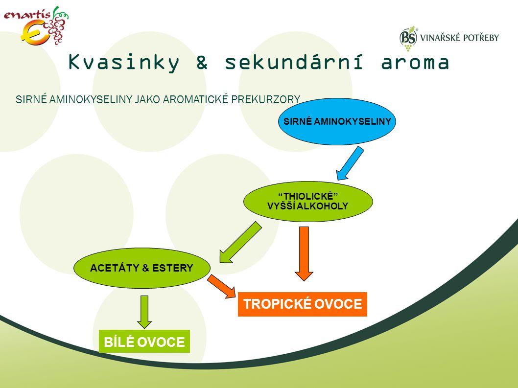 Kvasinky & sekundární aroma
