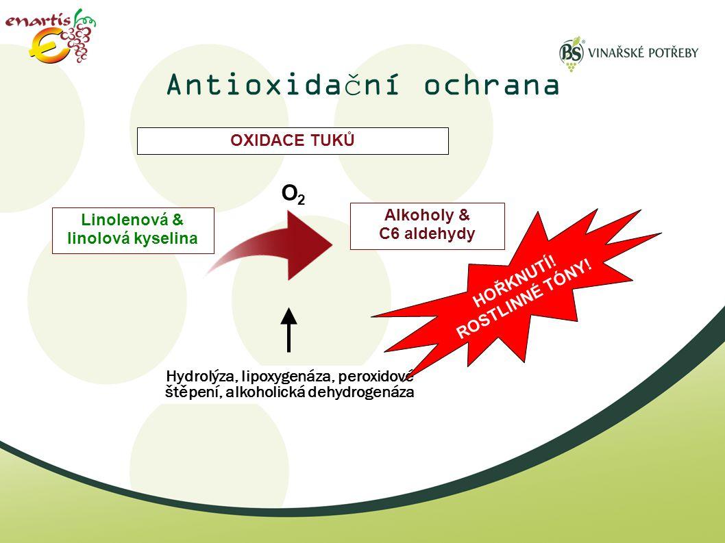 Antioxidační ochrana O2 OXIDACE TUKŮ Alkoholy & C6 aldehydy