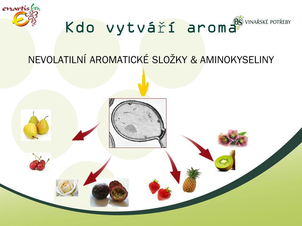 NEVOLATILNÍ AROMATICKÉ SLOŽKY & AMINOKYSELINY