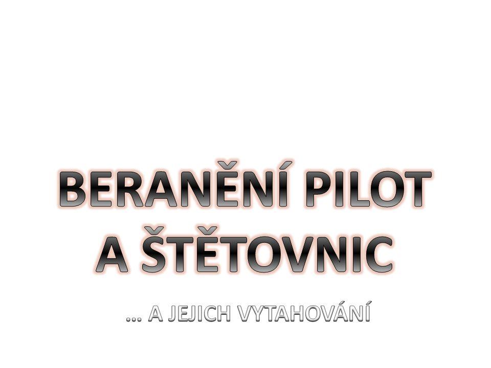 BERANĚNÍ PILOT A ŠTĚTOVNIC