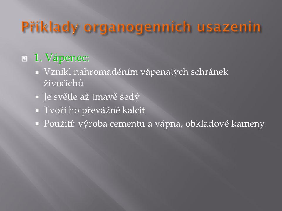 Příklady organogenních usazenin