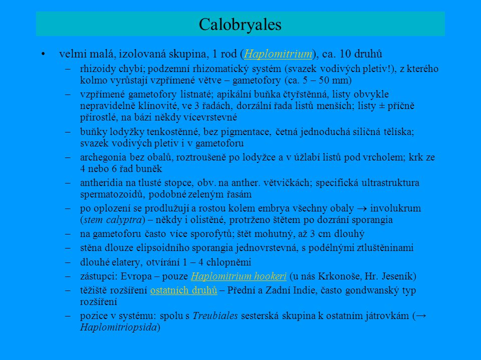 Calobryales velmi malá, izolovaná skupina, 1 rod (Haplomitrium), ca. 10 druhů.