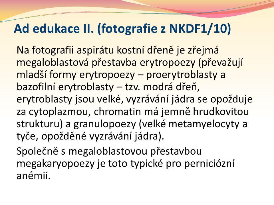 Ad edukace II. (fotografie z NKDF1/10)