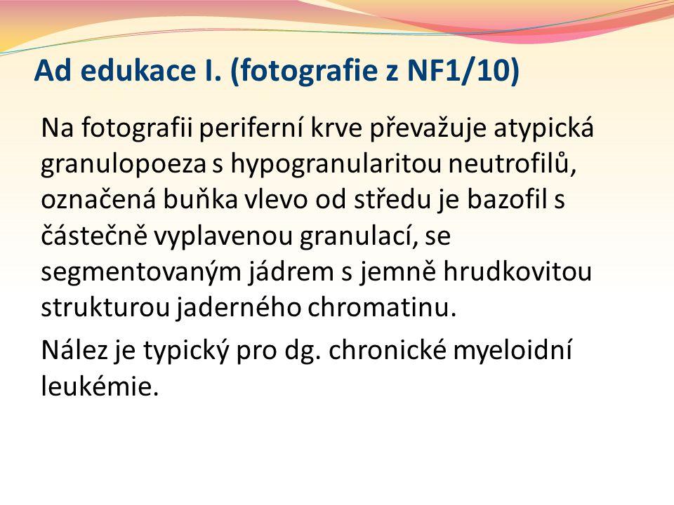 Ad edukace I. (fotografie z NF1/10)