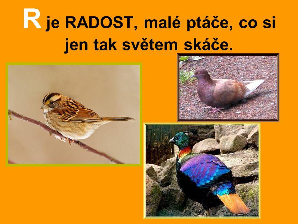 R je RADOST, malé ptáče, co si jen tak světem skáče.