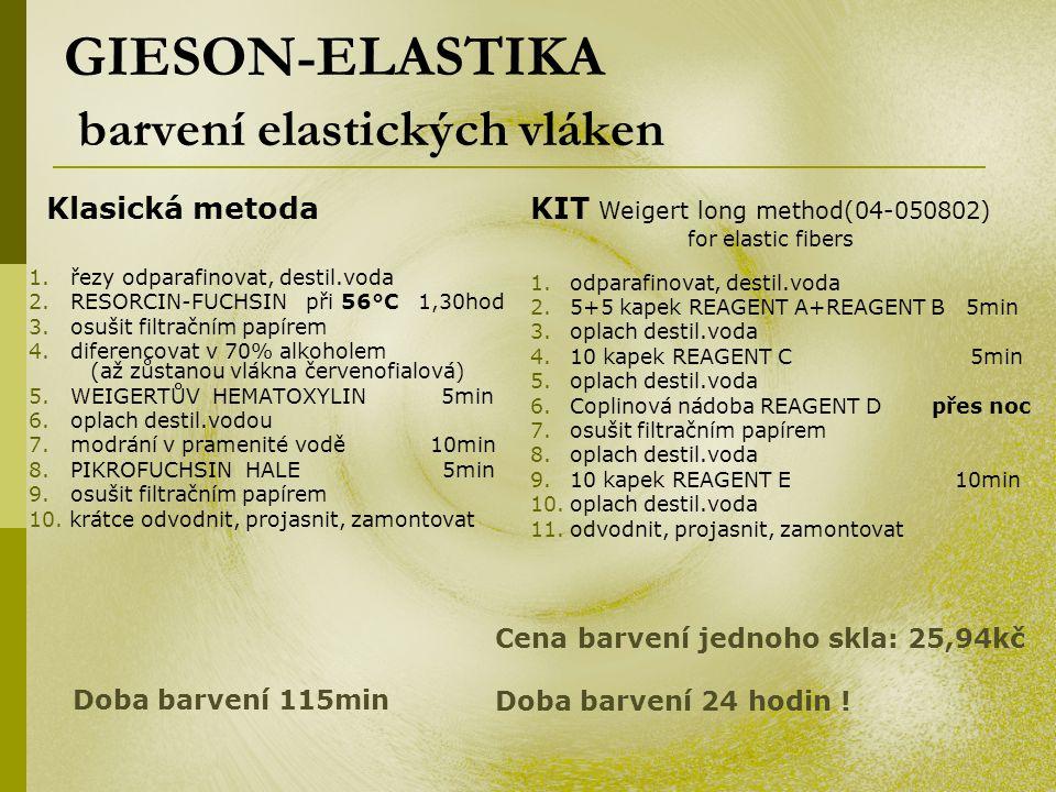 GIESON-ELASTIKA barvení elastických vláken