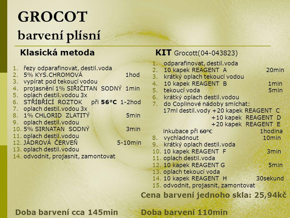 GROCOT barvení plísní Klasická metoda KIT Grocott(04-043823)