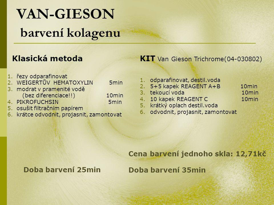 VAN-GIESON barvení kolagenu