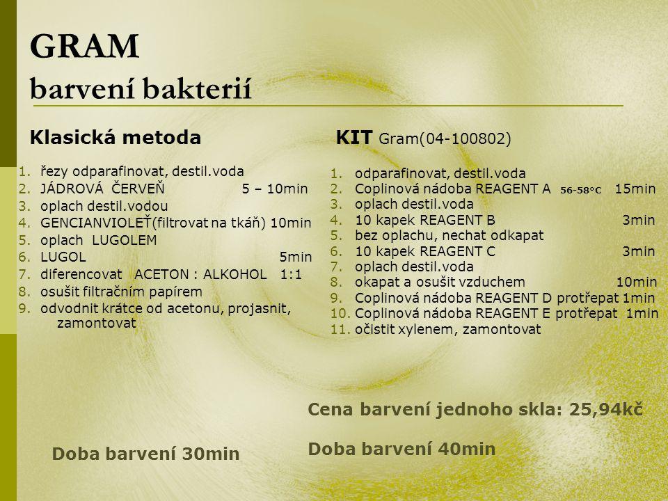 GRAM barvení bakterií Klasická metoda KIT Gram(04-100802)