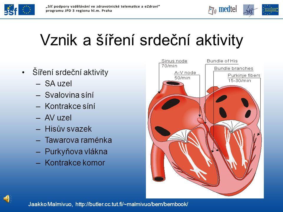 Vznik a šíření srdeční aktivity