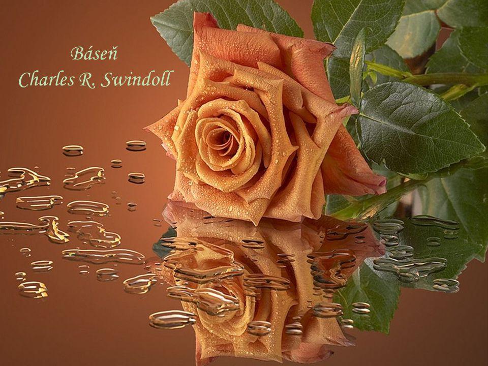 Báseň Charles R. Swindoll