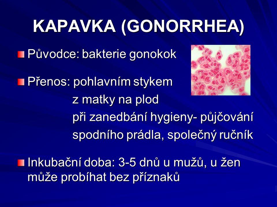 KAPAVKA (GONORRHEA) Původce: bakterie gonokok Přenos: pohlavním stykem