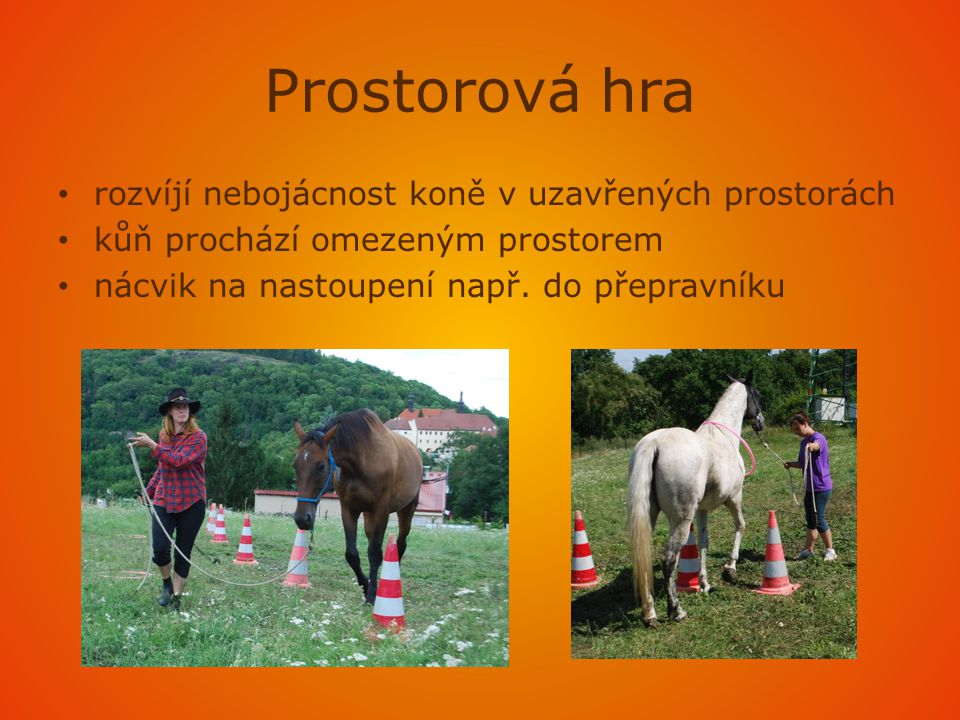 Prostorová hra rozvíjí nebojácnost koně v uzavřených prostorách
