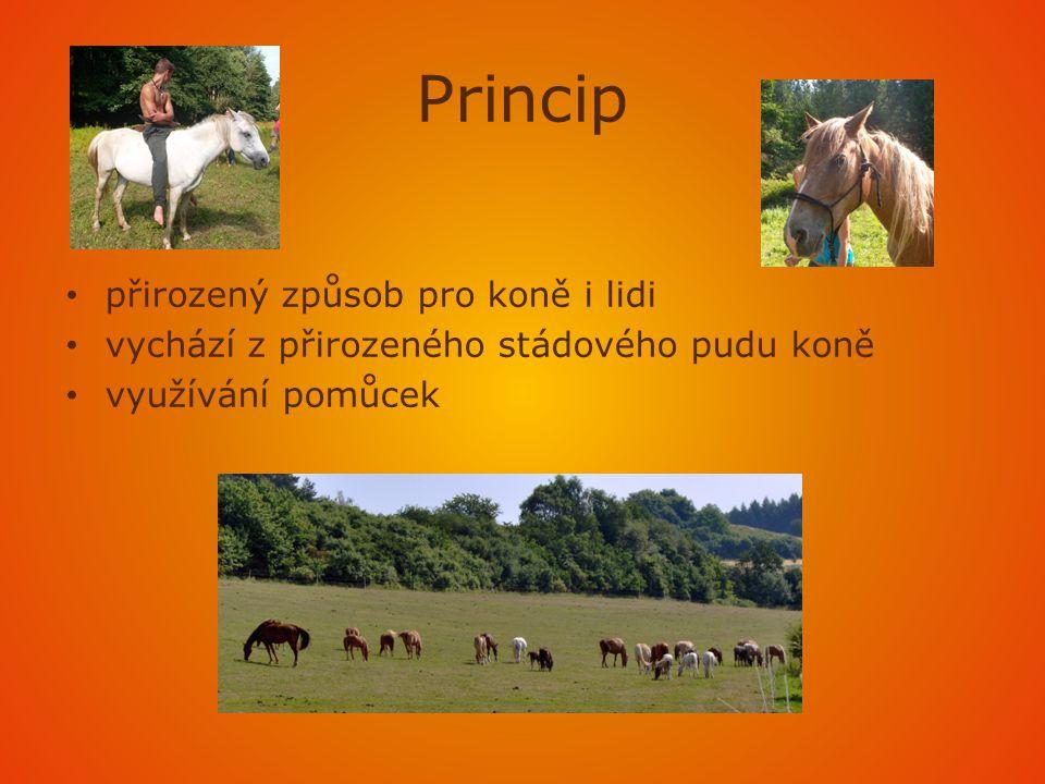Princip přirozený způsob pro koně i lidi