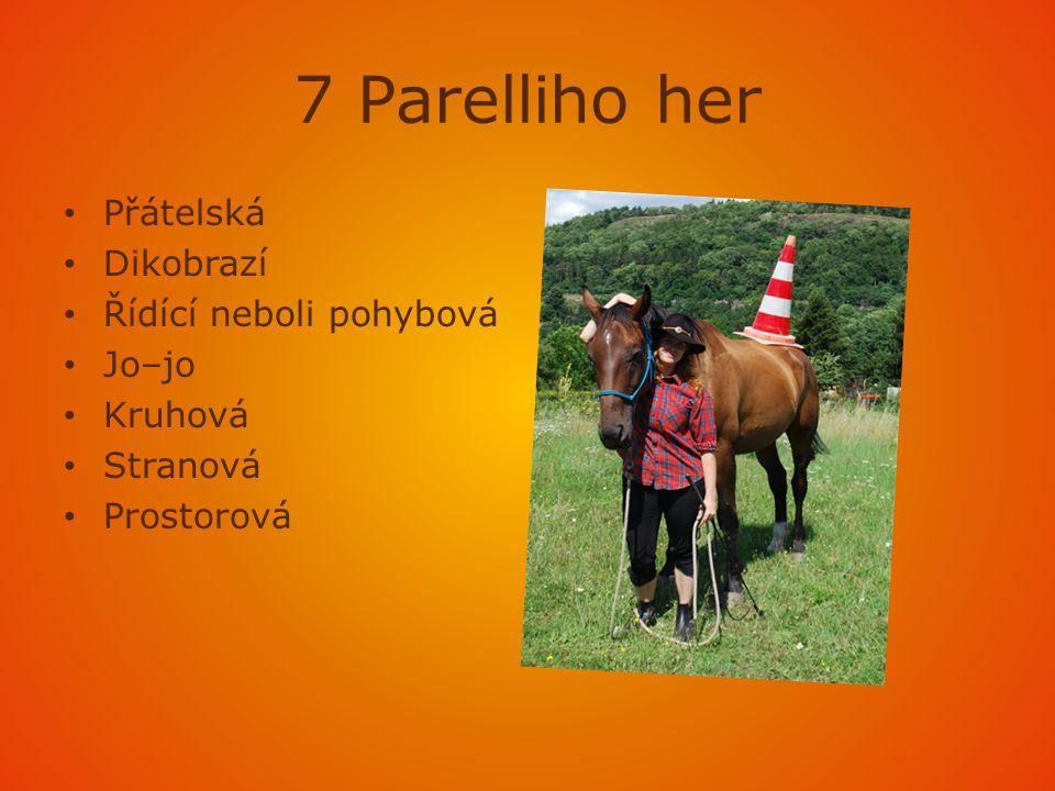 7 Parelliho her Přátelská Dikobrazí Řídící neboli pohybová Jo–jo