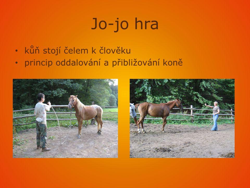 Jo-jo hra kůň stojí čelem k člověku