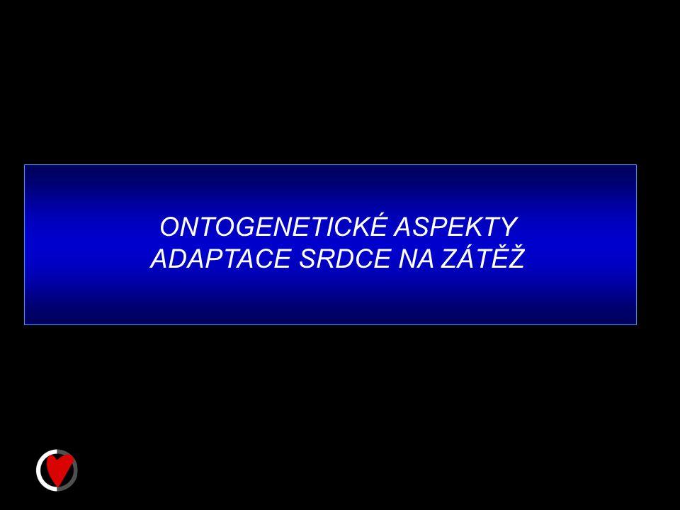 ONTOGENETICKÉ ASPEKTY ADAPTACE SRDCE NA ZÁTĚŽ