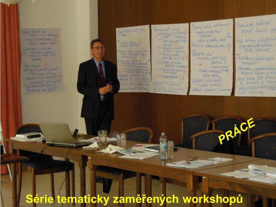 Série tematicky zaměřených workshopů