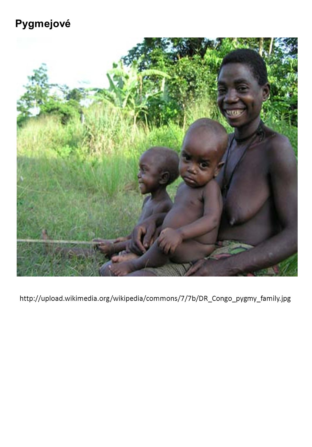 Pygmejové http://upload.wikimedia.org/wikipedia/commons/7/7b/DR_Congo_pygmy_family.jpg