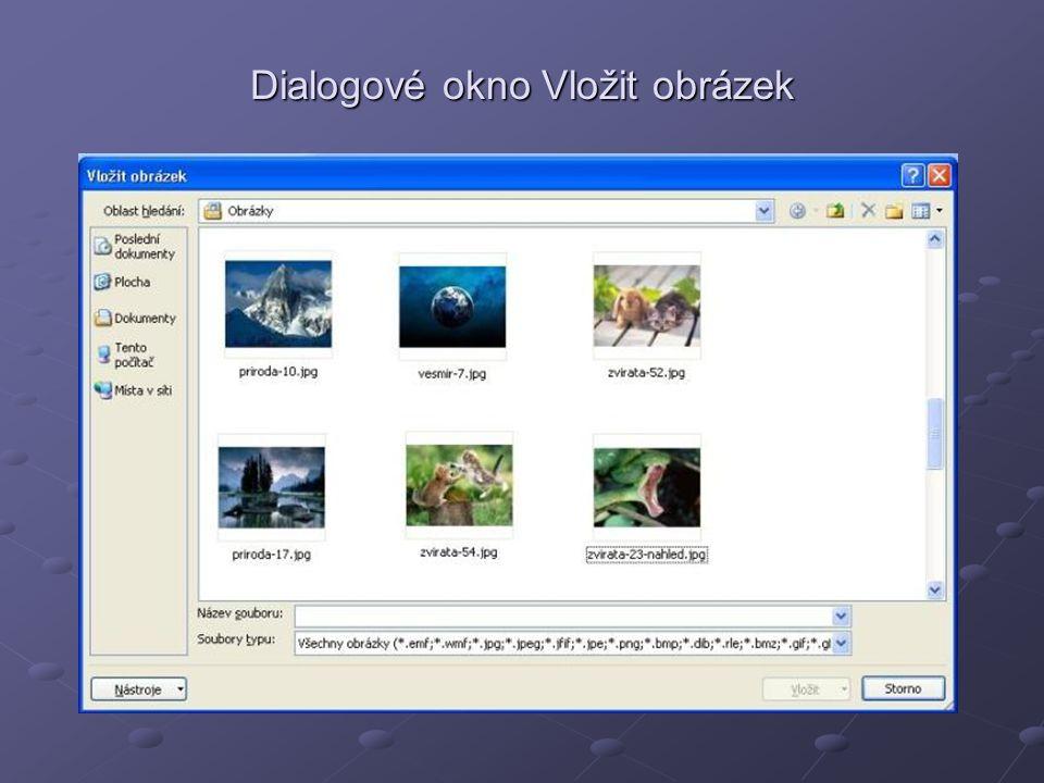 Dialogové okno Vložit obrázek