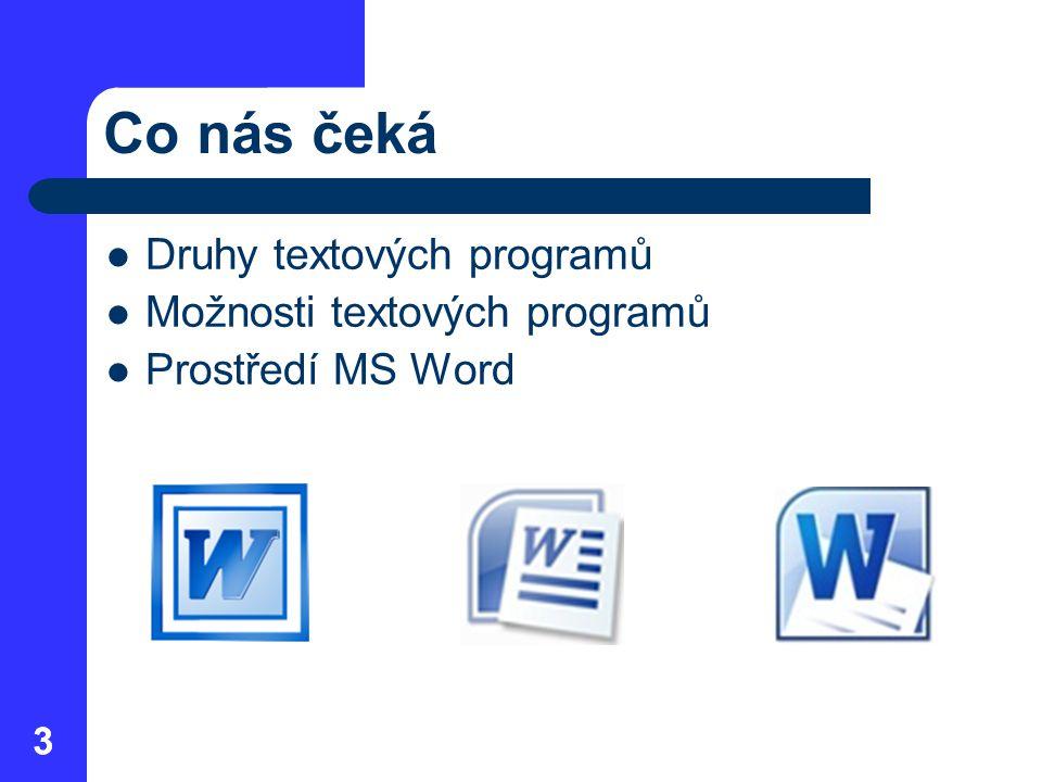 Co nás čeká Druhy textových programů Možnosti textových programů