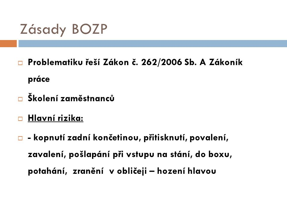 Zásady BOZP Problematiku řeší Zákon č. 262/2006 Sb. A Zákoník práce