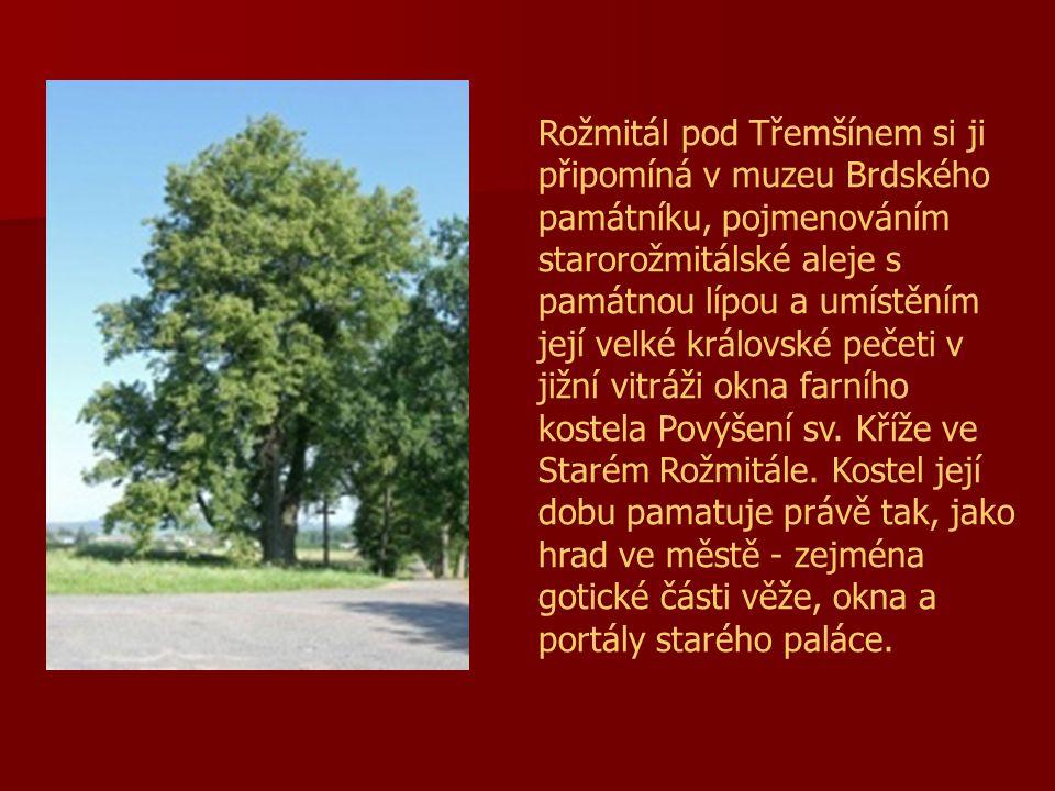 Rožmitál pod Třemšínem si ji připomíná v muzeu Brdského památníku, pojmenováním starorožmitálské aleje s památnou lípou a umístěním její velké královské pečeti v jižní vitráži okna farního kostela Povýšení sv.
