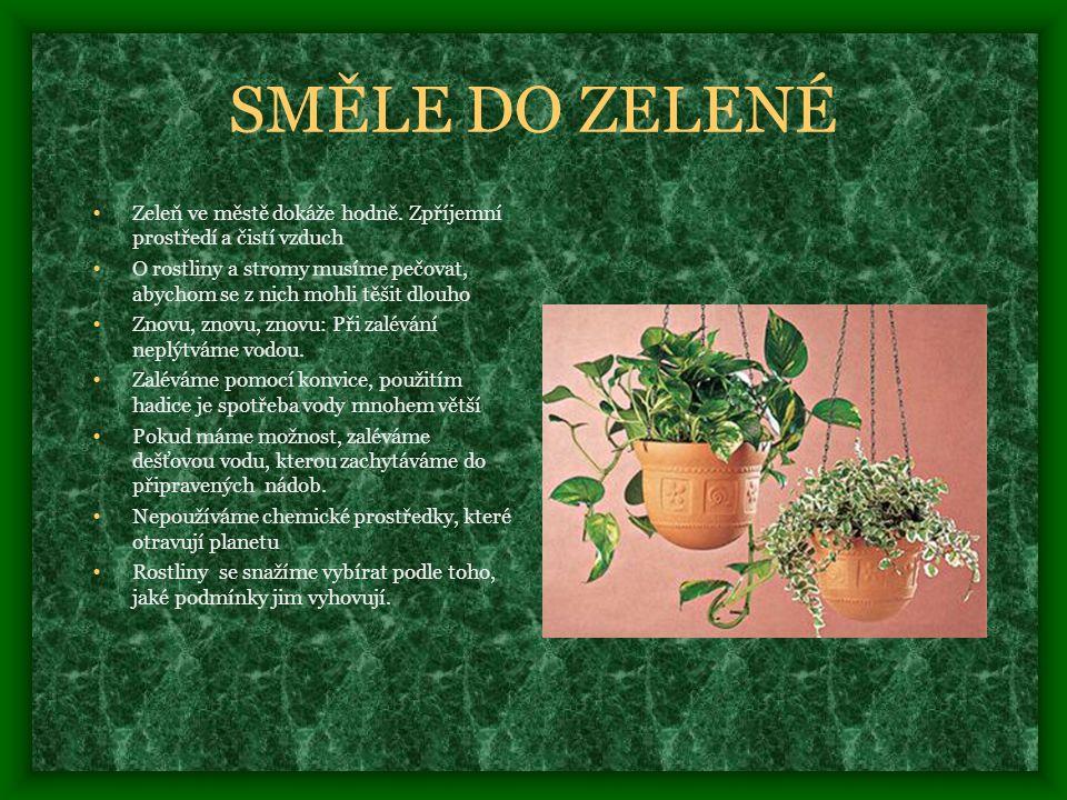 SMĚLE DO ZELENÉ Zeleň ve městě dokáže hodně. Zpříjemní prostředí a čistí vzduch.