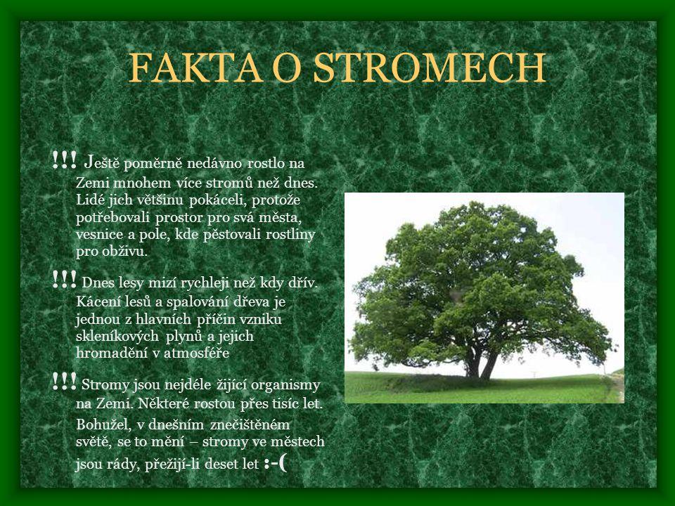 FAKTA O STROMECH
