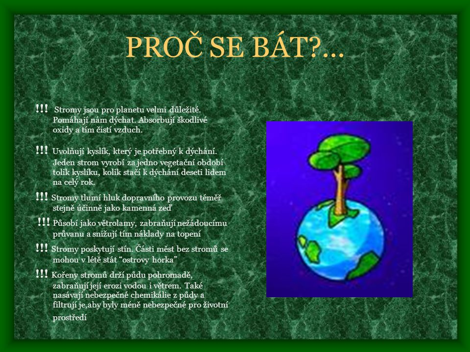 PROČ SE BÁT ... !!! Stromy jsou pro planetu velmi důležité. Pomáhají nám dýchat. Absorbují škodlivé oxidy a tím čistí vzduch.