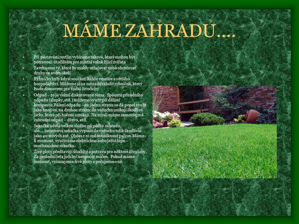 MÁME ZAHRADU.... Při pěstování rostlin vybíráme takové, které mohou být potravou i útočištěm pro místní volně žijící zvířata.