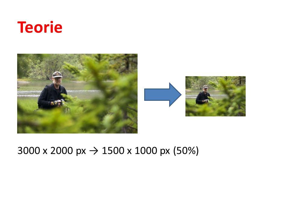 Teorie 3000 x 2000 px → 1500 x 1000 px (50%)